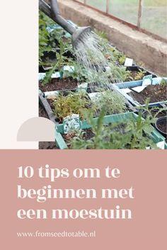 Garden Ideas, Landscaping Ideas, Backyard Ideas