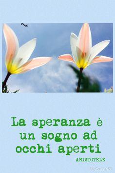 #quote #hope #speranza #aristotele