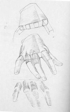 anatomie hand