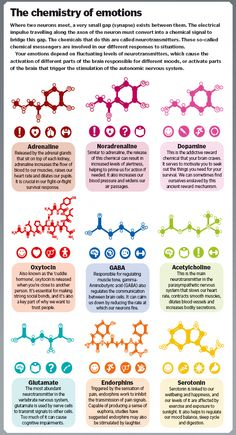 Die Chemie der Gefühle - dunno - Chemistry Informations Mental And Emotional Health, Mental Health Awareness, Mental Health Nursing, Mental Health Facts, Social Emotional Learning, Emotional Healing, Brain Health, Brain Facts, Psychology Facts
