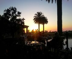 """Thank you for sharing your favorite #pelicanhill #memory with us, Mojka! """"Visiting from Florida, I was spending the last evening enjoying some relaxing time with my friends, when the sun was just setting between the palm trees, putting a mystic glow on the beautiful grounds and the bay. The water glass was catching the sunlight, as if it was absorbing the last sun ray into the glass."""""""