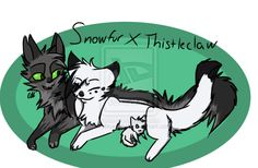 Snowfur and Thistleclaw