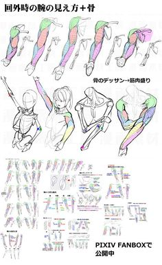 Learn To Draw People - The Female Body - Drawing On Demand Male Figure Drawing, Body Reference Drawing, Human Drawing, Body Drawing, Anatomy Reference, Art Reference Poses, Manga Drawing, Arm Anatomy, Human Anatomy Art