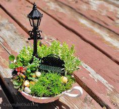 DIY Mini Gardens • Ideas Tutorials! Including this cute little miniature teacup garden from salt tree.