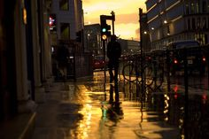 Raining Gold by paulbence, via Flickr