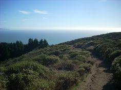 Dipsea Trail, Mill Valley, California.