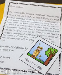 Insect unit! Students will receive letters from Entomologist Eddie as they study different insects.