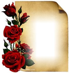 Create your own photo montage roses on Pixiz. Frame Border Design, Boarder Designs, Page Borders Design, Photo Frame Design, Framed Wallpaper, Flower Wallpaper, Frame Background, Paper Background, Dragon Silhouette