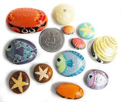 Hand Painted Rocks A Shell Full of Sea Life by Coolisart on Etsy