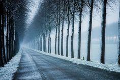 Snow road.