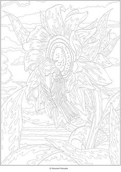 New Color By Number Coloring Book