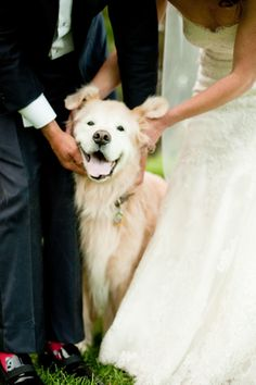 Adorable wedding pups: http://www.stylemepretty.com/2016/01/13/paws-for-a-cause-celebrate-puppy-love-with-toast-finns-wedding/