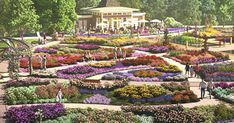 Rose Garden A Massive New Rose Garden Is Opening In Ontario This Summer 2018 featured image - The perfect summer day trip. Ontario Travel, Toronto Travel, Garden Nursery, Closer To Nature, Canada Travel, Canada Trip, Best Location, Hiking Trails, Hiking Spots
