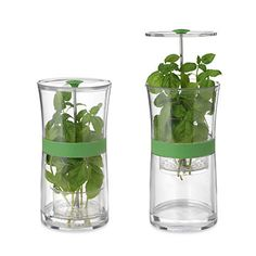 Look what I found at UncommonGoods: Herb Keeper for $22.99