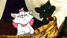 Check out all the awesome aristocats gifs on WiffleGif. Including all the disney gifs, cat gifs, and duchess gifs. Walt Disney, Disney Magic, Disney Cats, Disney Dream, Disney Love, Disney And Dreamworks, Disney Pixar, Disney Characters, Disney Channel