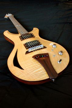 Peters Instruments | Avenger #1 Semi-hollow body