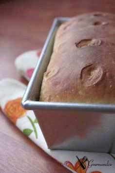 Pão de kefir e mel - fermentação natural