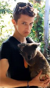 not sure whats happening here but i like the hair and the face. and the koala.