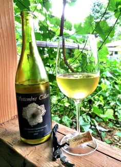 We pulled the cork on a Settembre Cellars 2007 Chardonnay this past weekend. What a treat, it's cellaring beautifully!