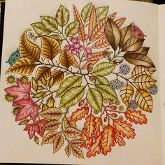 Autumn  #secretgardencolouringbook #secretgarden #johannabasford #colour #color #colouringforgrownups #colouringbooks #pencils #relaxed #beautifulcoloring #coloringsecrets #fall #autumn #autumnleaves