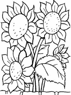 Click Realistic Sunflowers Coloring page for printable version ...