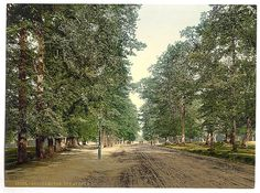 Southampton Avenue before the road was tarmacked Old Pictures, Old Photos, Southampton England, Vintage Christmas Photos, Places In England, Princess Cruises, British Isles, Hampshire, Tourism