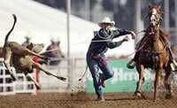 Find out what you can do if a rodeo comes to your town and how you can help put a ban on this cruel sport.
