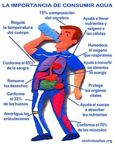 Water is a very important element for our body and beneficial for health. Health And Nutrition, Health And Wellness, Health And Beauty, Health Fitness, Nutrition Shakes, Healthy Tips, Healthy Habits, Healthy Eating, Agua Kangen
