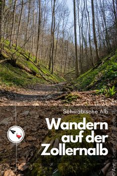 Wanderlust, Country Roads, Ursula, Tricks, Outdoor, Black Forest, Vacation Travel, Tours, Outdoors