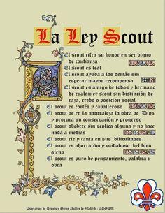 Ley y Promesa (ASGAM) Boy Scouts, Boy Scout Troop, Survival Blog, Eagle Scout, Scouting, Semper Fi, Babys, Dragon Ball, Memories
