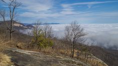 This park sits right on the cliff's edge of the Blue Ridge Escarpment that drops down from the mountains in western North Carolina to the upcountry of South Carolina. The park is more than 3,000 acr…