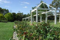 Potential wedding spot Centennial Park, Wedding Spot, Sydney