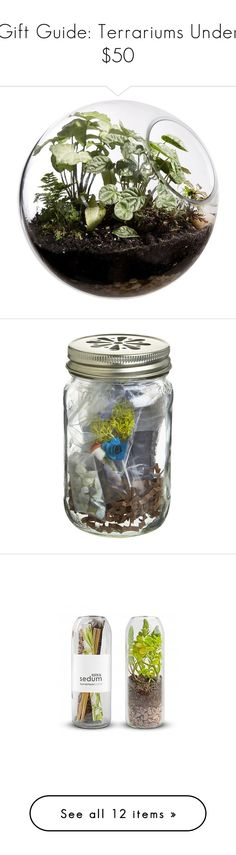 """""""Gift Guide: Terrariums Under $50"""" by polyvore-editorial ❤ liked on Polyvore featuring giftguide, under50, terrariums, home, home decor, floral decor, plants, fillers, flowers and furniture"""