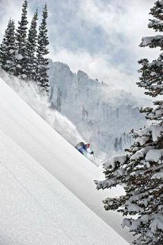 cool freeride ski - white powder snow in Alta, Utah winter . Ski Extreme, Extreme Sports, Freeride Ski, Ski Magazine, Ski Season, Winter Season, Snow Skiing, Alpine Skiing, Mountain Resort
