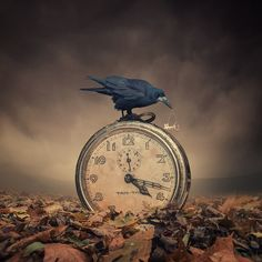 """Tic tac - Photo manipulation based on my own stock photography  Special offer: -45% for Canvas 1M x1M (rolled on tube)  <a href=""""http://www.carasdesign.com/#!/Photoshop"""">BEST TUTORIALS COLLECTION 2013</a> l <a href=""""http://www.carasdesign.com/#!/HowItsMade"""">HOW IT's MADE</a> l <a href=""""http://www.carasdesign.com/#!/FineArt"""">PURCHASE the PRINT</a>  If you like this work or any other of mine, you can order the <a href=""""http://carasdesign.com/#!/Photoshop/TutorialsPSD"""">TUTORIAL'S + PSD</a…"""