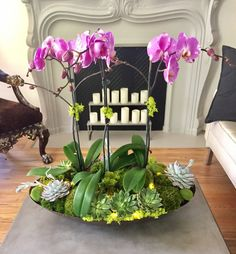 Use orchids, flowers and plants to decorate your home. Thirty five gorgeous ways to decorate with orchids, flowers, and plants. Feed your design ideas now. Potted Orchid Centerpiece, Orchid Flower Arrangements, Orchid Planters, Orchid Pot, Succulent Centerpieces, Orchids Garden, Succulent Arrangements, Succulent Terrarium, Table Arrangements