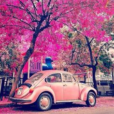 Beautiful Istanbul like the pink castle Vw Bus, Retro Cars, Vintage Cars, My Dream Car, Dream Cars, Carros Retro, Picture Frame Sets, Paint By Number Kits, Cute Cars