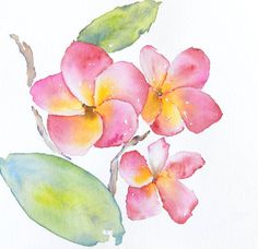 Nice idea for a watercolor flower tattoo (it's a plumeria). Maybe with a butterfly