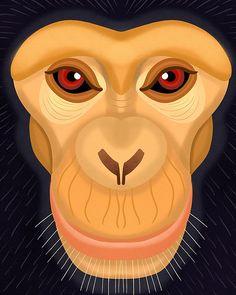 Chimp by Nicole Wilson Zoo Art, Magnificent Beasts, Wilson Art, Monkey Art, Animal Sketches, Art Lessons, Character Art, Fantasy Art, Art Drawings