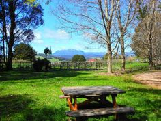 Wilmot Hills Vineyard and the beautiful scenery of north west Tasmania. Article and photo by Michelle Kneipp Pegler for www.think-tasmania.com