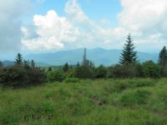 Discover Andrew's Bald located in Great Smoky Mountains National Park and get a firsthand look into hiking the trail.