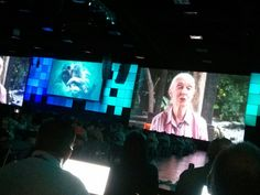 Conservation and GIS discussed by jane goodall