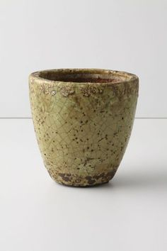 Aged Herb Pot, Small - anthropologie.com ($6.00)
