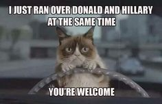 O thank you Grumpy Cat. Now back up over Him, make sure you leave lots of rubber, then head over to Capitol Hill and catch the Speaker for the House, and the  President of the Senate, before they do anything more really stupid. You're an Angel Grumpy Cat. To drive out the snakes they must have their heads removed.