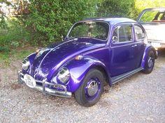 1967_volkswagen_beetle-pic-49034-640x480.jpeg (640×480)