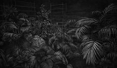 Moody Charcoal Drawings by Levi van Levuw