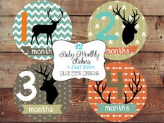 Woodlands Monthly Baby Stickers,Forest Bodysuit Stickers,Deer baby age stickers,Baby Age Stickers, B0700 on Etsy, $12.50
