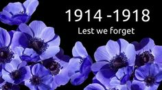 Remembrance Sunday is fast approaching and millions of people up and down Britain will be seen wearing poppies, but you may also see purple poppies - so what do they mean? David Essex, Poppy Pins, Royal British Legion, Armistice Day, Remembrance Sunday, Purple Poppies, Strictly Come Dancing, Fallen Heroes