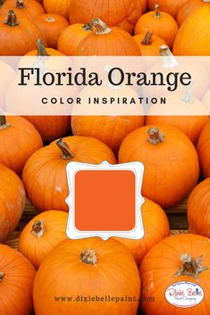 Perfect for fall and everywhere in between, Florida Orange is a bright orange color that captures the feeling of the season. Use it in your home today! Shop Florida Orange Chalk Mineral Paint from Dixie Belle now! Orange Painted Furniture, Florida Oranges, Dixie Belle Paint, Mineral Paint, Easy Peasy, Color Inspiration, Orange Color, Paint Colors, Minerals