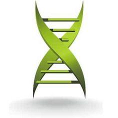 cancro alla prostata e test del genoma